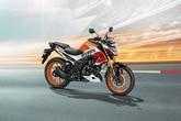 Honda Hornet 2.0 image