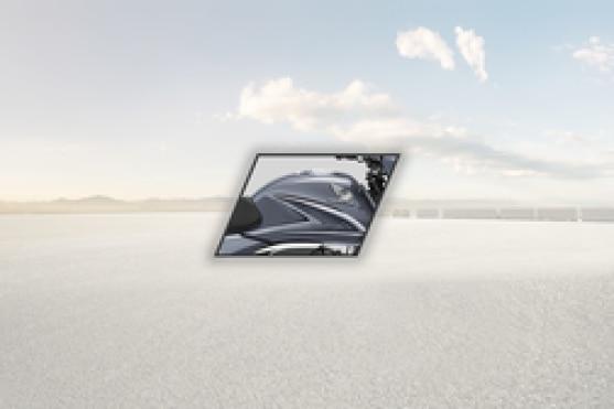 Honda Shine Fuel Tank