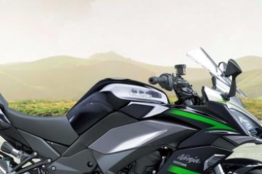 Kawasaki Ninja 1000 Fuel Tank