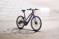 Lectro Glide Lady