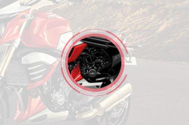 Mahindra MOJO XT 300 Engine