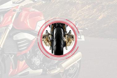 Mahindra MOJO XT 300 Leg Guard View