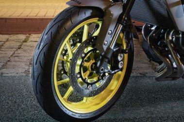 Yamaha MT 09 (2016-2020) Front Brake View