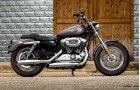 Harley Davidson Sportster 1200 Custom Launching Today