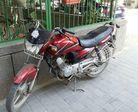 Yamaha Alba Alloy